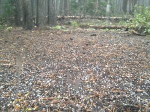 Hail outside my tent
